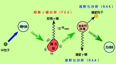 畑のたより、環境・核篇 | SSブログ